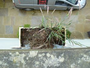 Roof Repairs York | Gutter Clearing | Roof Maintenance